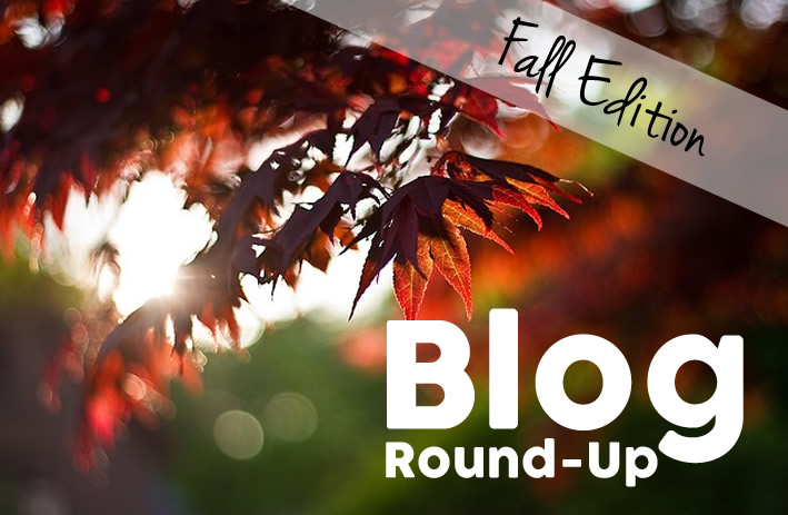 Blog Round-Up: Fall Edition